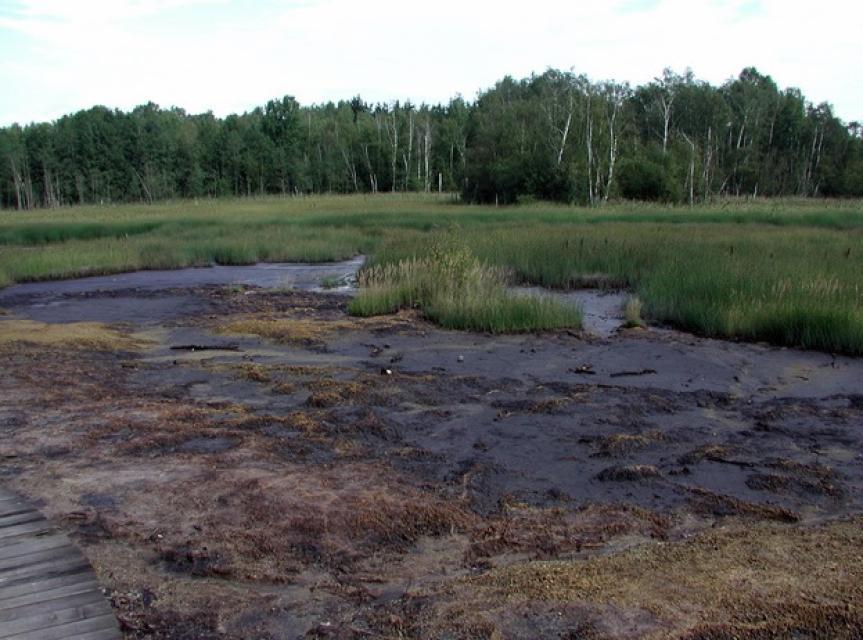 Egerbecken - Naturreservat Soos