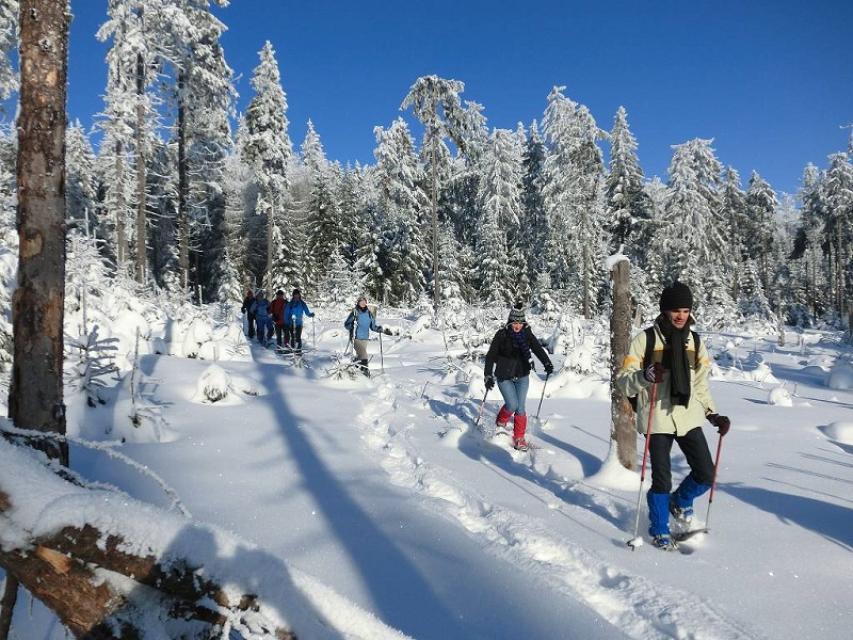 Schneeschuhwandern Seyferth