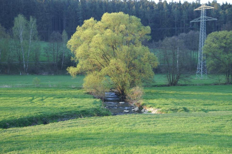 Wetter Schönwald Oberfranken
