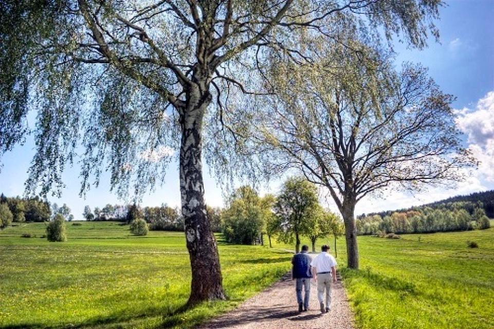 Am Fuße der Luisenburg - Rundwanderweg 1