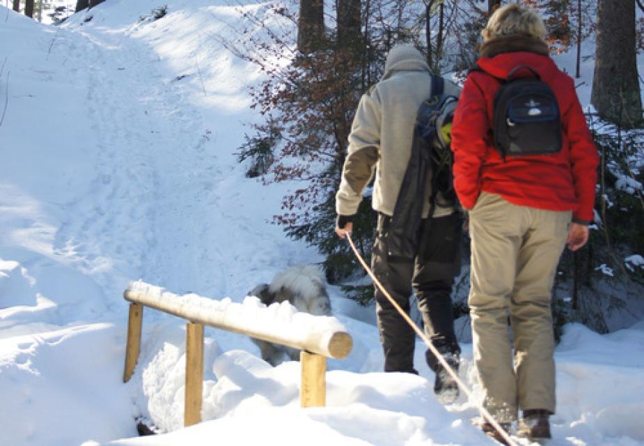 Winterwanderweg Bischofsgrün- Karches