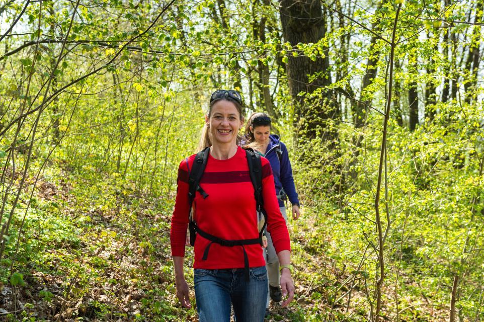 Shinrin Yoku - Waldbaden am Stammberg