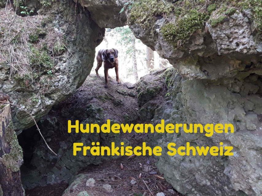 Hundewanderung Hoch über Muggendorf