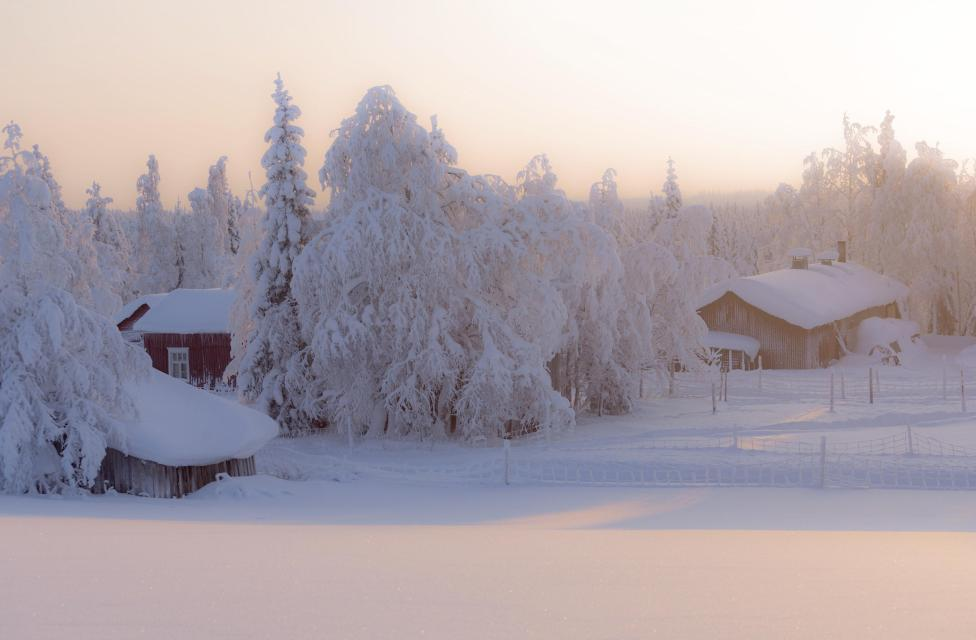 Winter am Polarkreis