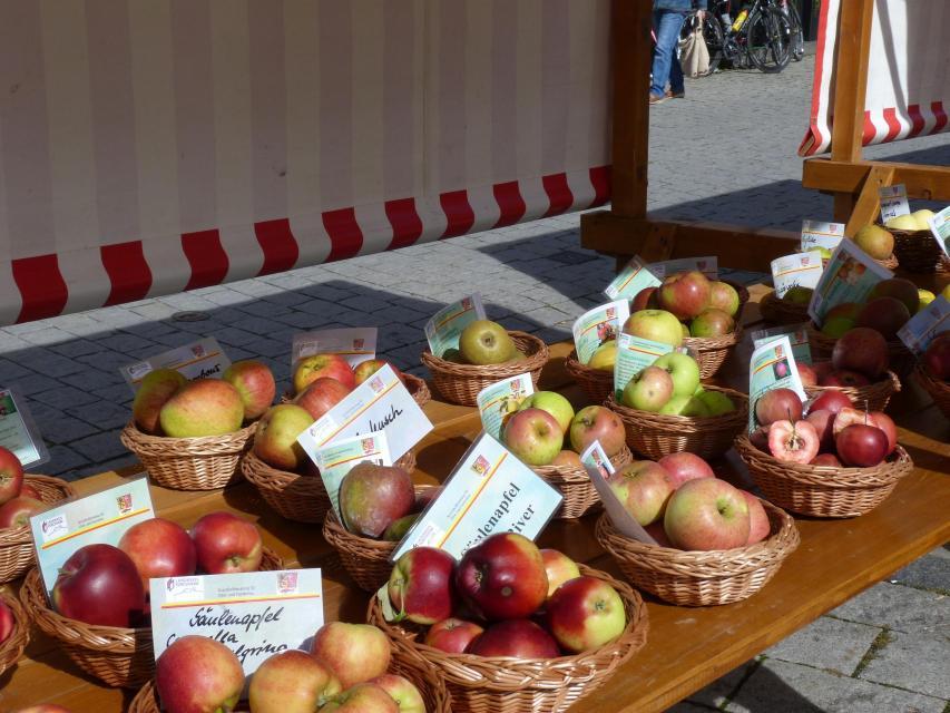 Obsterlebnistag am Ebermannstädter Marktplatz