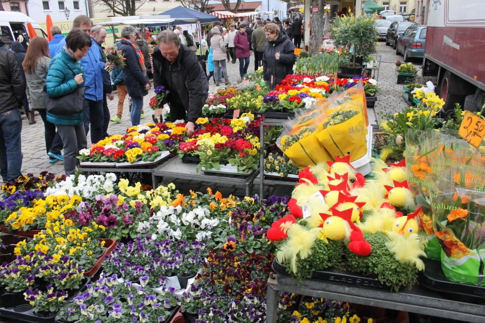 Palmmarkt mit verkaufsoffenem Sonntag in Hollfeld