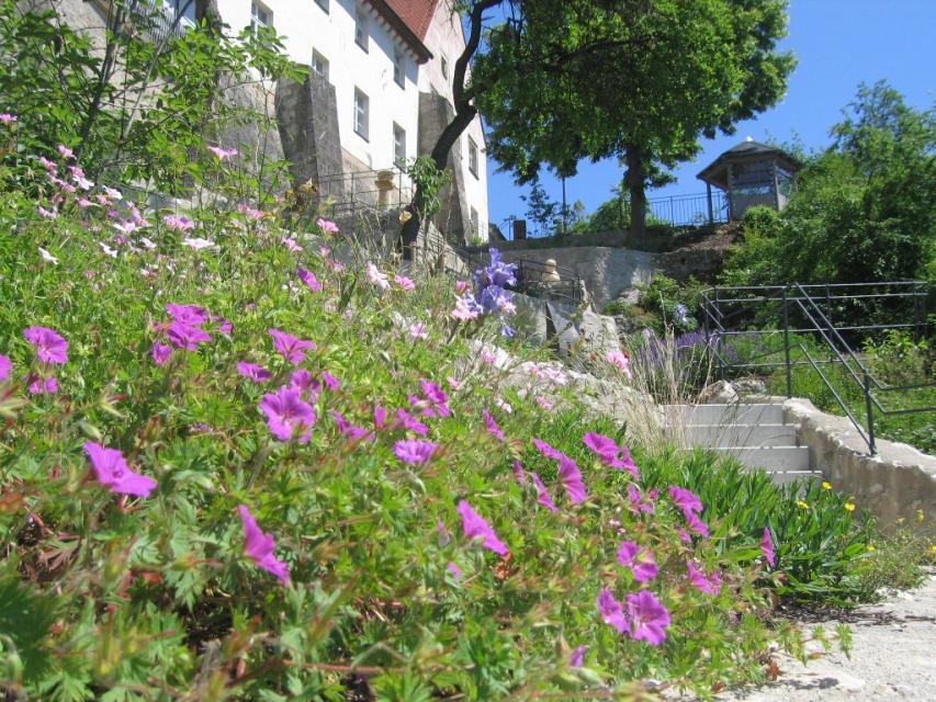 Terrassengärten in Hollfeld - Touristinfo Hollfeld