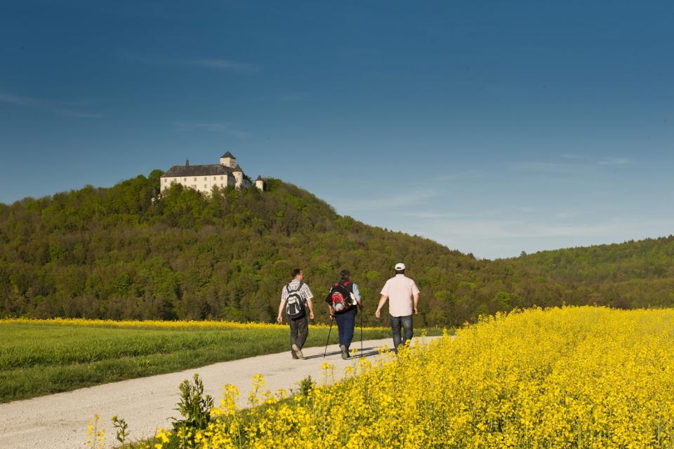Blick auf Schloss Greifenstein - FrankenTourismus/A. Hub