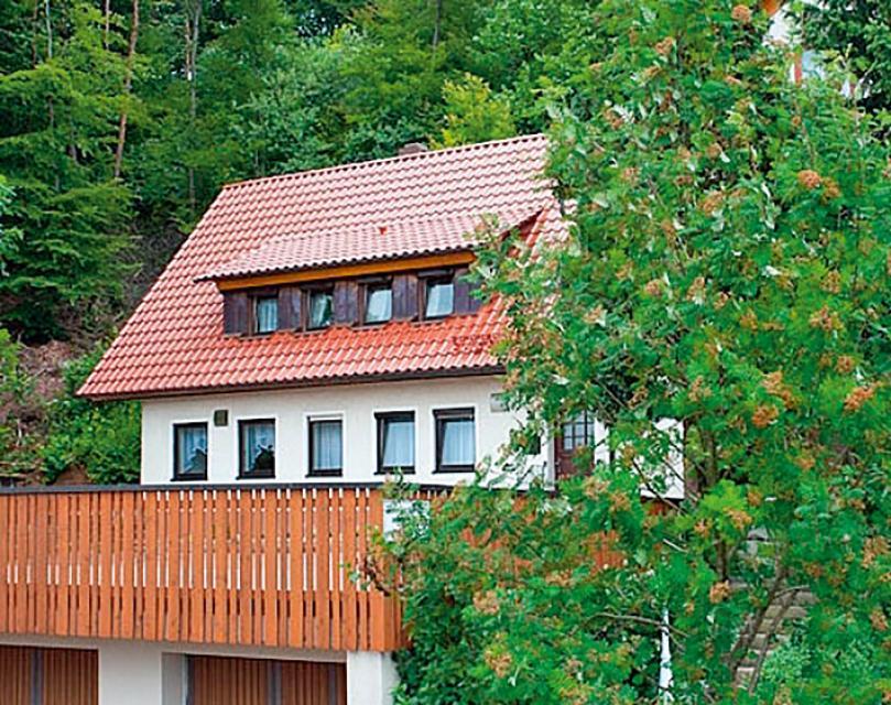 Pension - Ferienwohnung Waldhaus Grüner