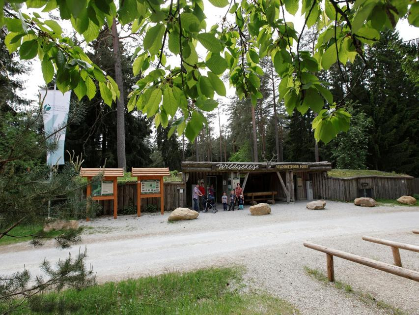 - Forstbetrieb Pegnitz