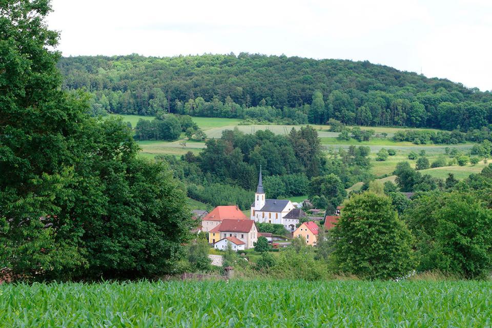 Kreuzauffindung, Schönfeld