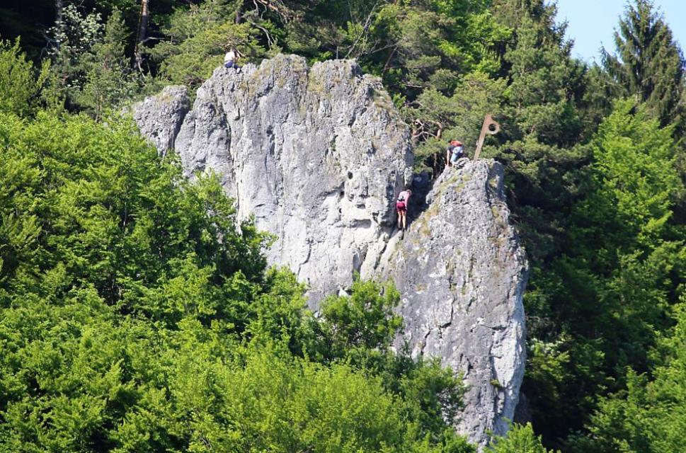 Fichtl-Haken auf dem Zehnerstein
