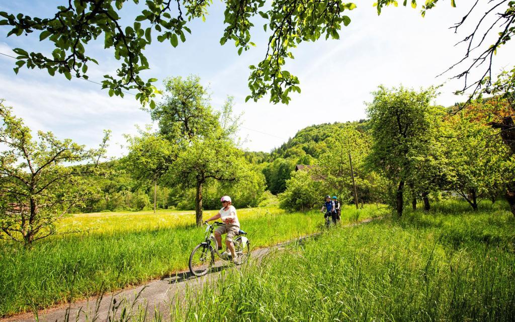 Fränkische Schweiz-Radweg