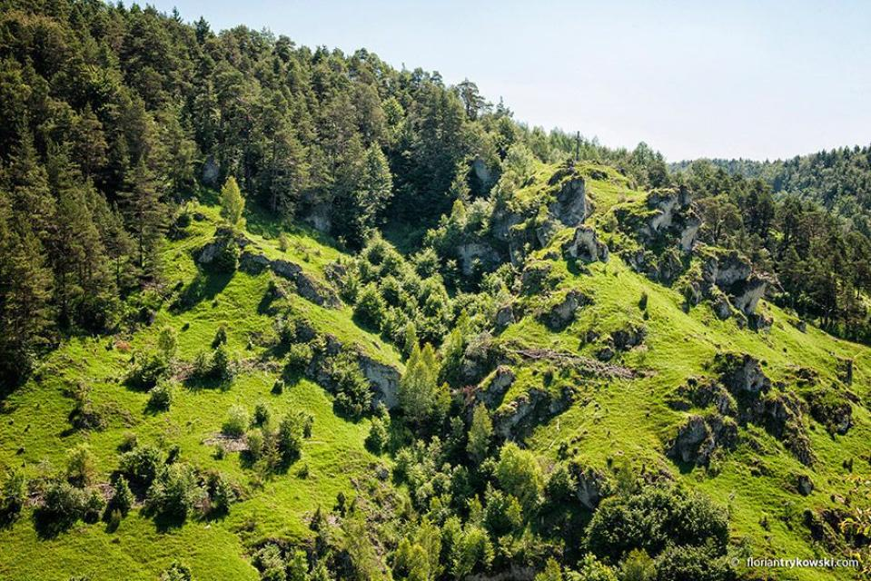 TZ Fränkische Schweiz, Trykowski - Blick aufs Püttlachtal