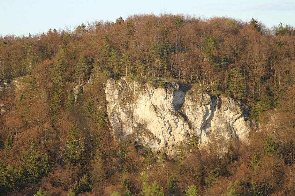 Durch den Pfarrwald zum Pfarrfelsen und Balkenstein