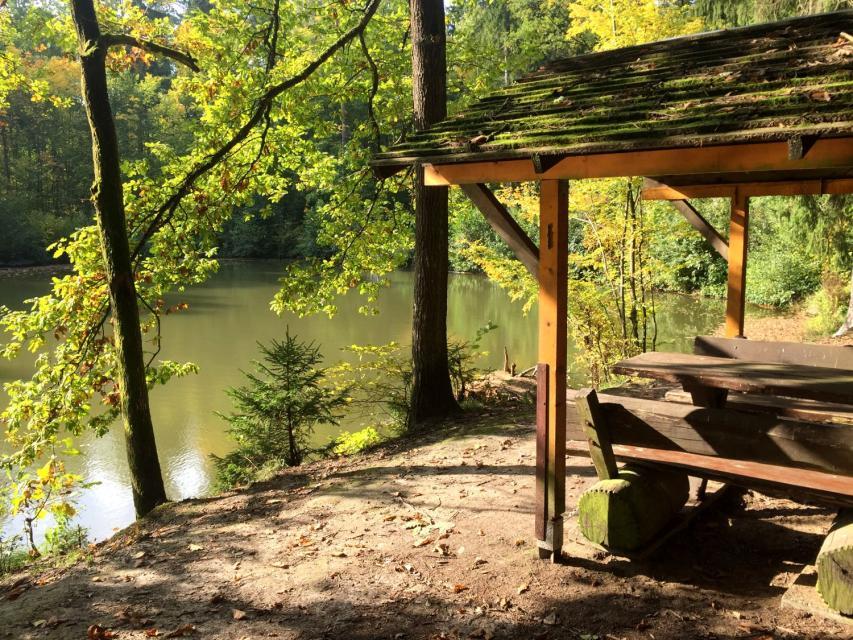 - See bei Serlbach im Wald