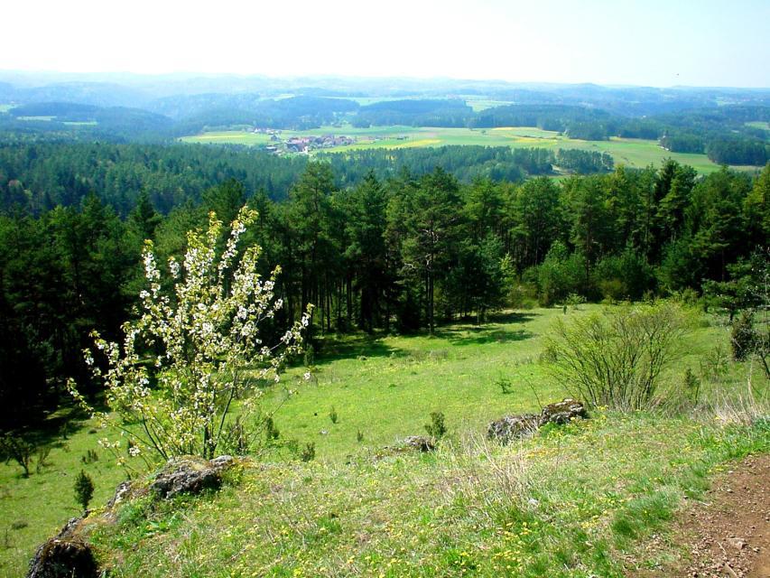 Tourismusbüro Pottenstein -