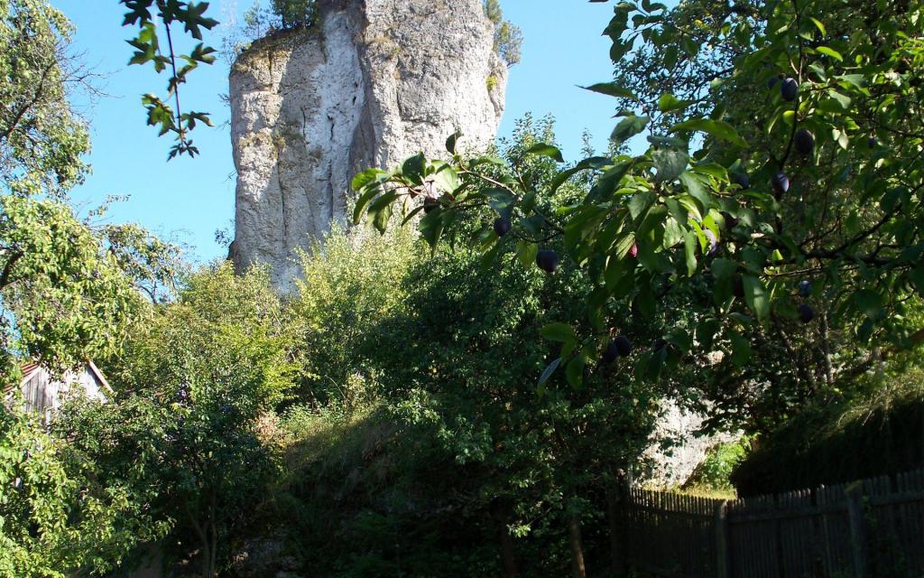 - Blick auf Burgruine Bärnfels