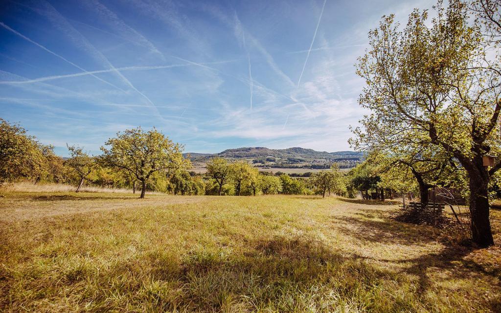 Vom Kellerwald zur Reuther Hut