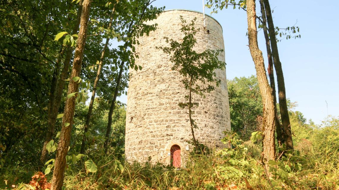 Fritz-Hornschuch-Naturpfad (Naturlehrpfad)