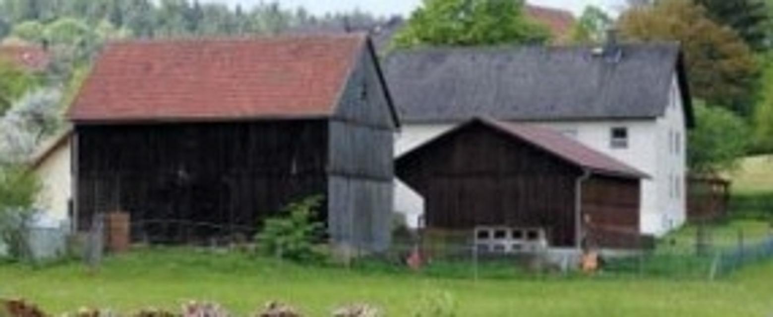 Leupser Mühle