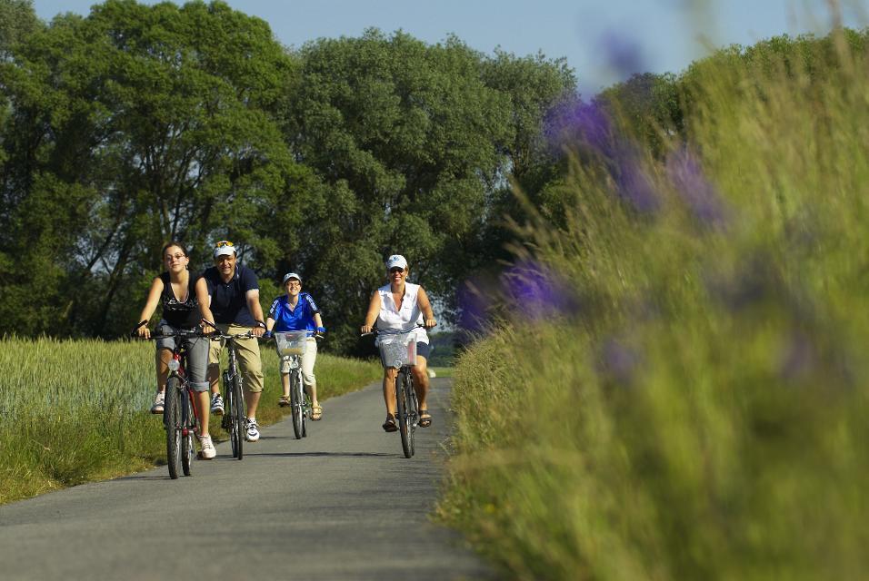 Radfahrer in der Fränkischen Toskana