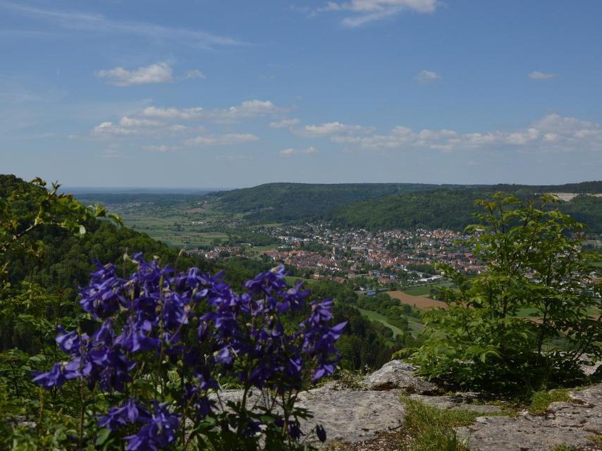 Blick vom Zuckerhut auf Ebermannstadt