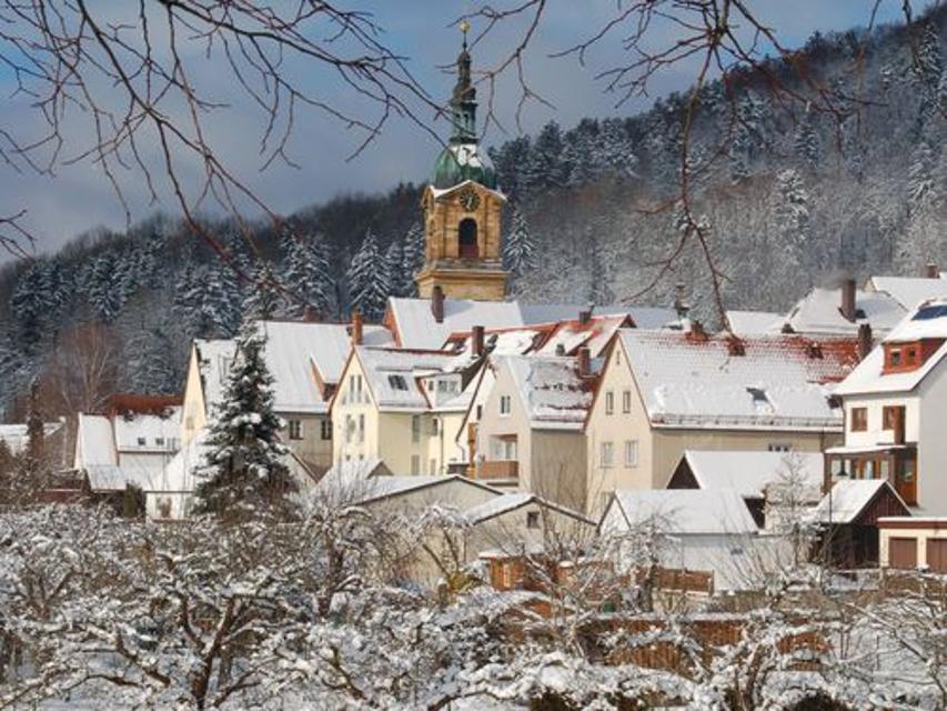 Pegnitz im Winter
