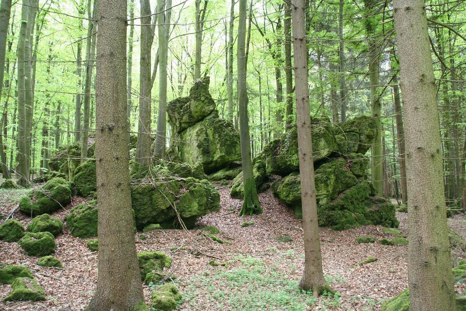 Wanderweg Wattendorf