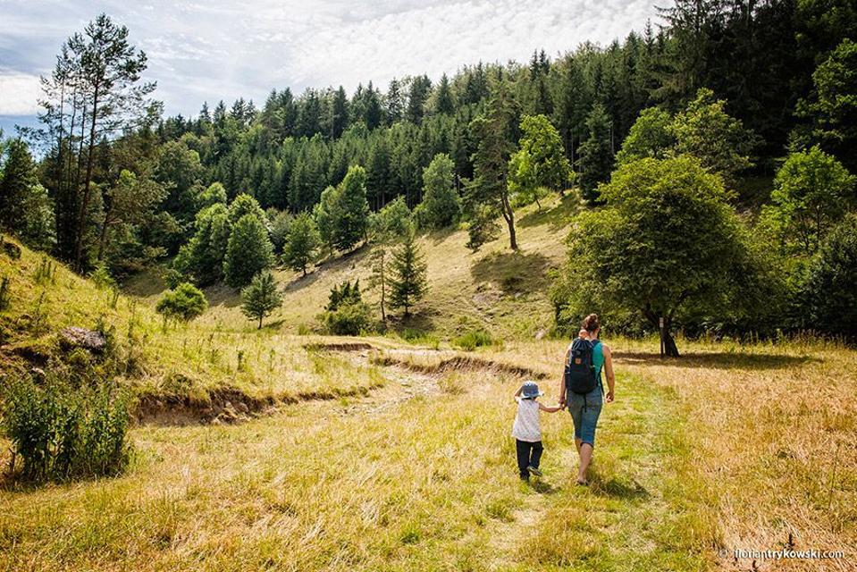 Wandern im Leidingshofer Tal