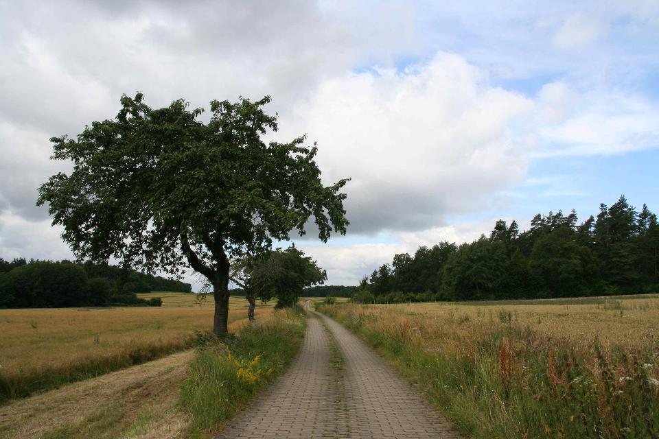 Hochebene Frankendorf