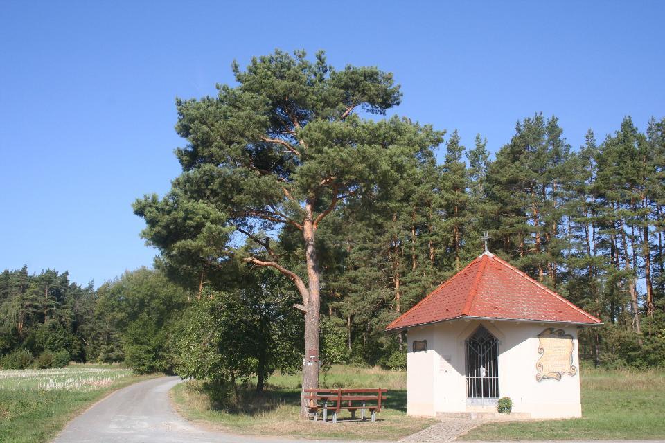 Kapellenweg Königsfeld
