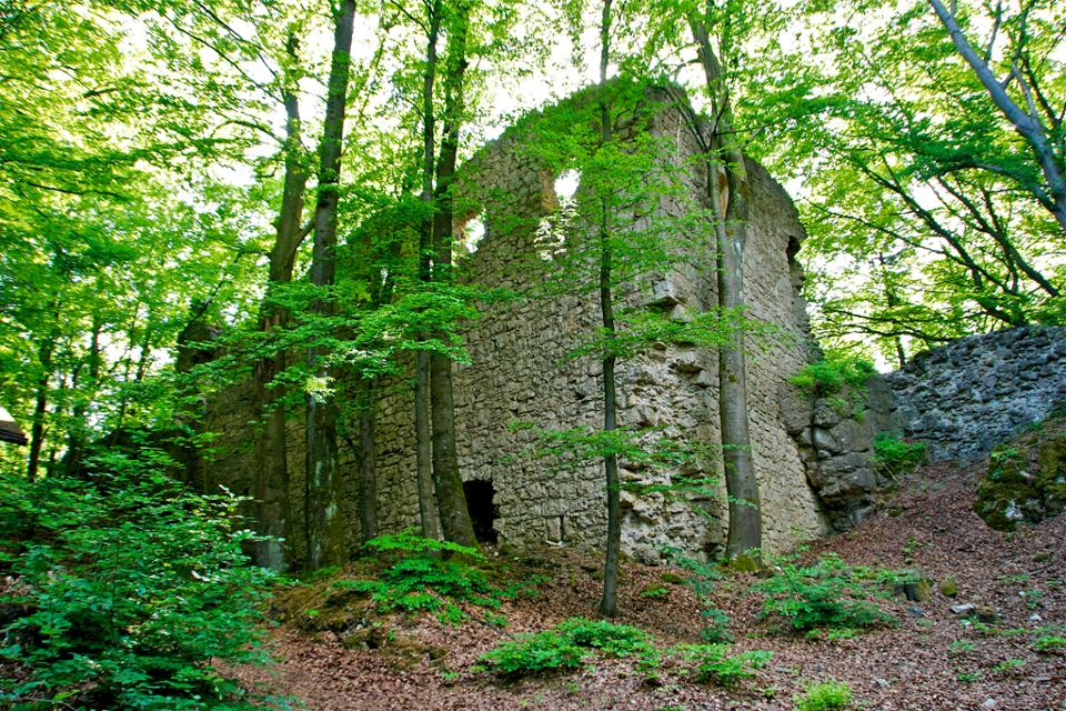 Ruine Poppberg
