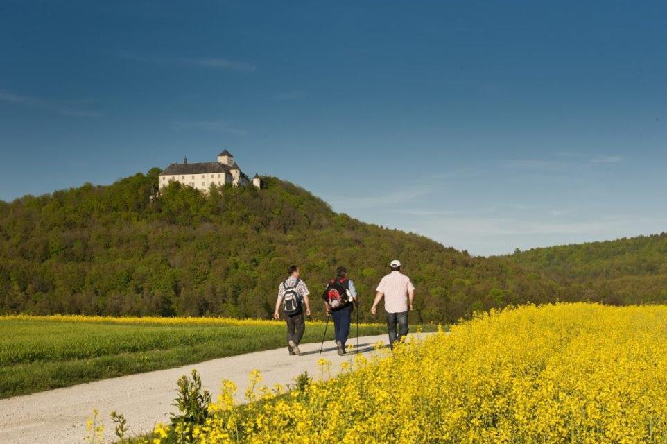 Wanderer unter Schloss Greifenstein