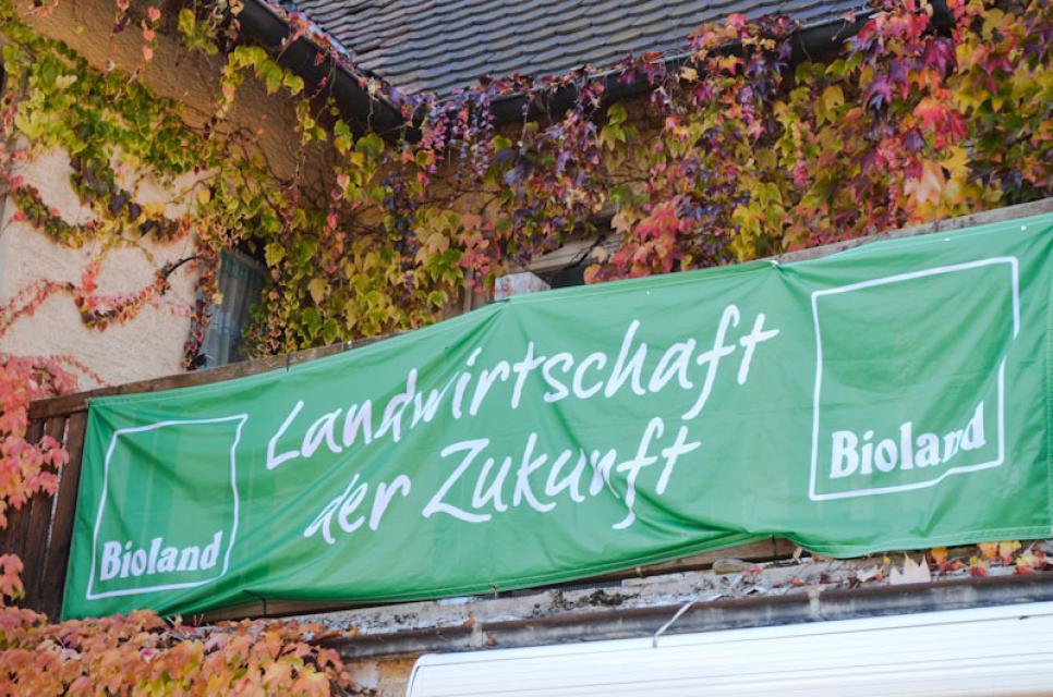Seit 1995 betreiben die Schmidt die Landwirtschaft nach ökologischen Richtlinien
