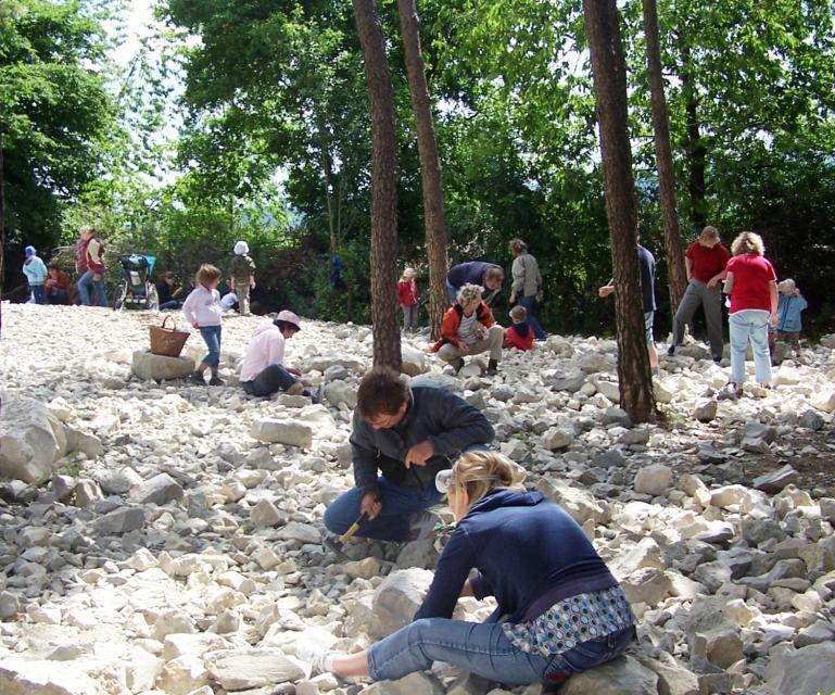 Kinder klopfen Fossilien