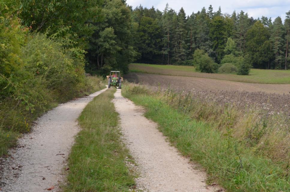 Brennholz vom Münzinghof