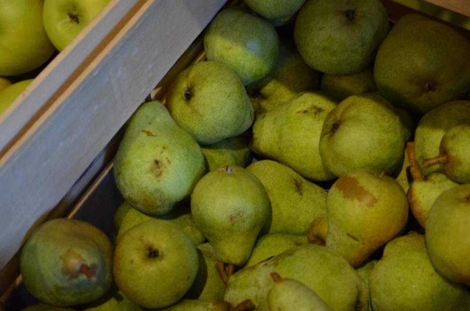Frisches Obst nach Saison
