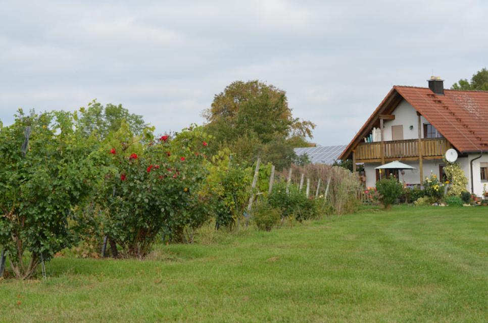 Um in den Obstgarten zu kommen, braucht Herbert Erlwein nur vor seine Haustür zu treten