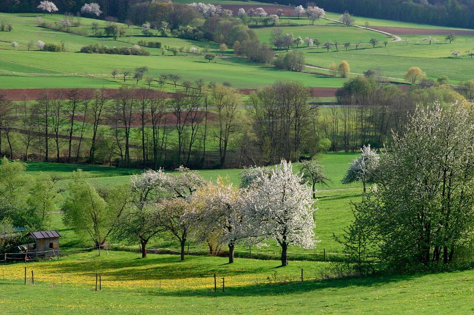 Landschaft bei Litzendorf im Frühling