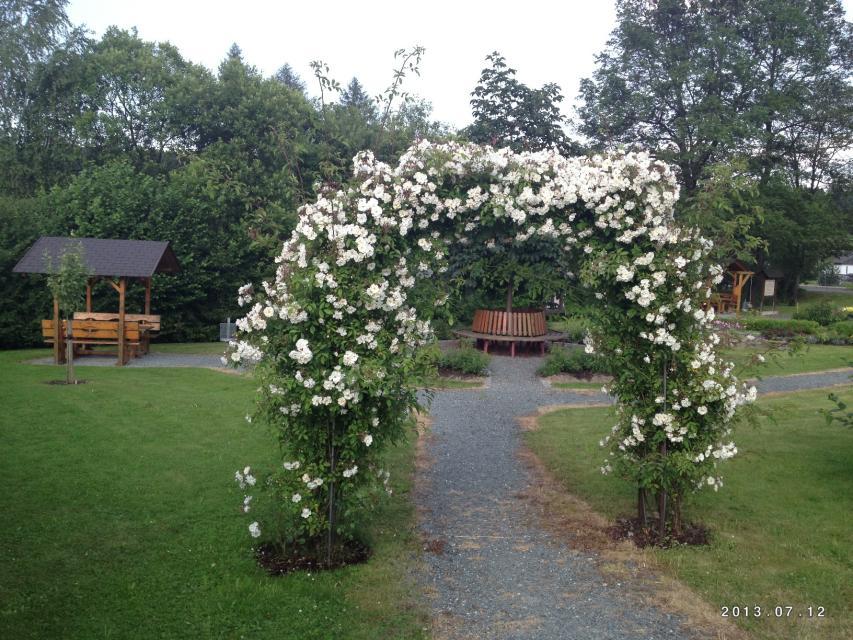 Blumenpracht im Rennsteig-Park Steinbach am Wald