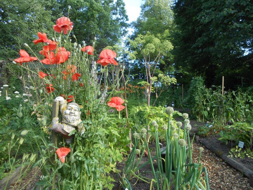 Nicht nur Kobolde lieben die Vielfalt im Garten