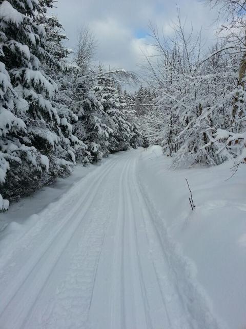 Winterparadies Frankenwald