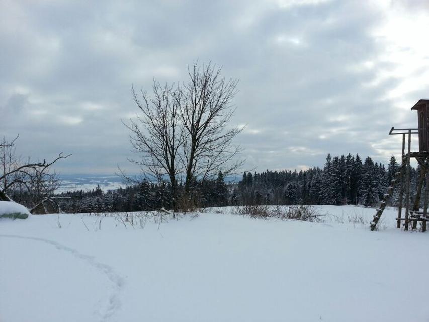 Winterimpression Rennsteigregion im Frankenwald