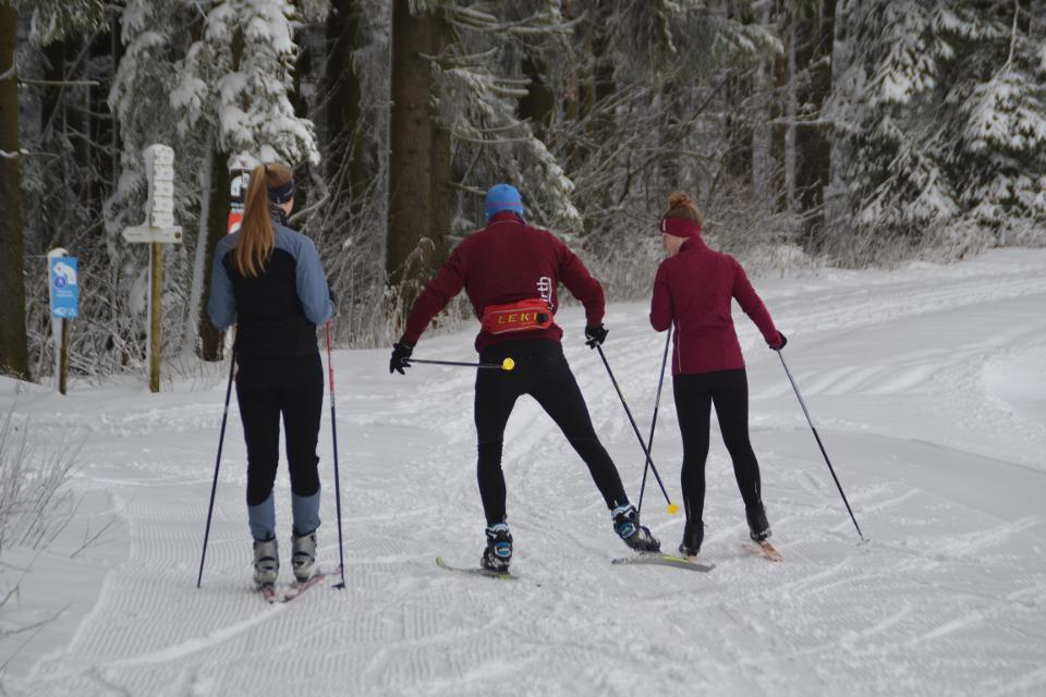 Skatingloipe