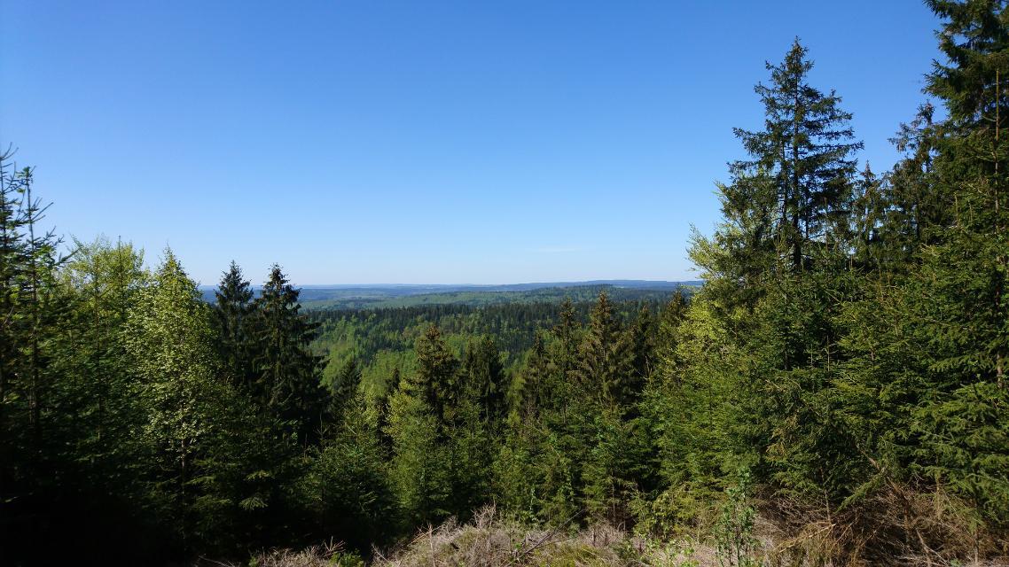 Ausblick in den Frankenwald