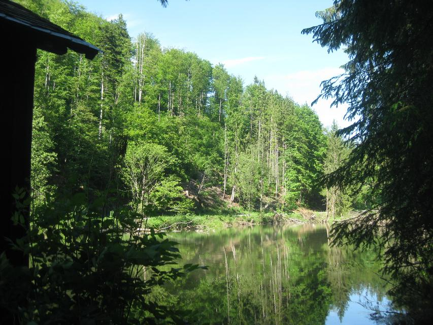 Teichhaus Lamitztal
