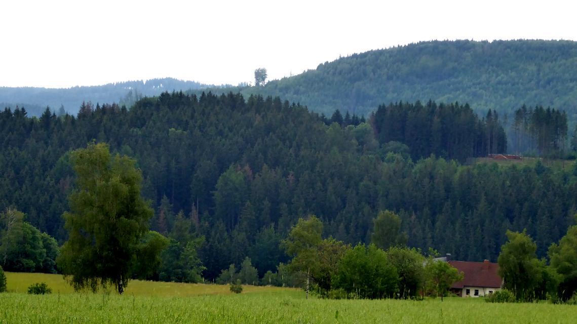 Gottsmannsgrün