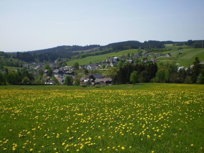 Blick auf Wickendorf