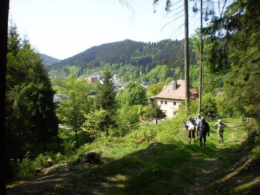 oberhalb von Förschendorf
